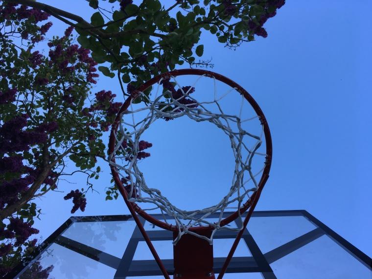 Basketball Häkelmonster